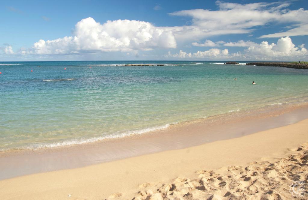 Turtle Bay Kuilima Cove