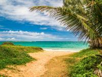 Laie beaches