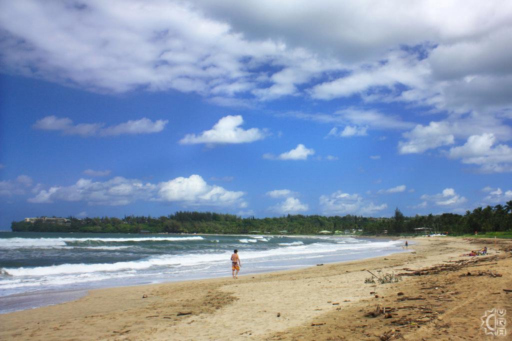 Hanalei bay beachfront rentals
