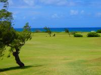 Kahuku golf courses