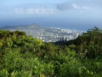 Honolulu hike: Pu'u Ohi'a Trail