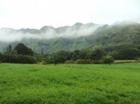 Wailua hikes