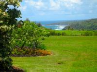 Kilauea vacation rental: Hale Nene - 3BR Home