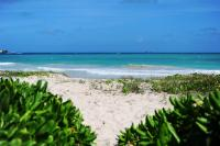 Kailua vacation rental: Turtle Beach