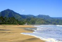 Hanalei vacation homes
