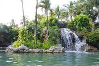 Princeville condo rental: 9105 Hanalei Bay Resort